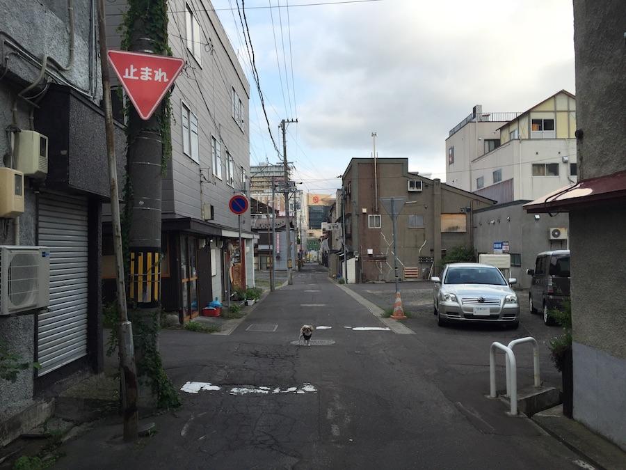shizunakadori